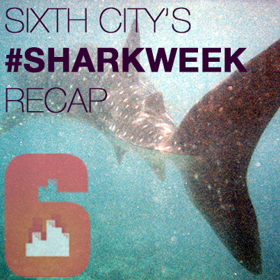 Sixth City Covers Important Implications of #SharkWeek's Twitter Feeding Frenzy.